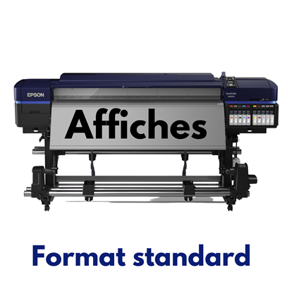 Affiches format standard